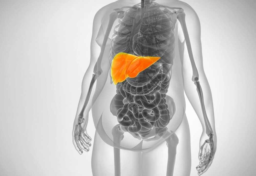 Više na dijeta za jetru